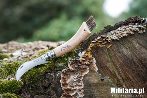 Opinel na grzyby