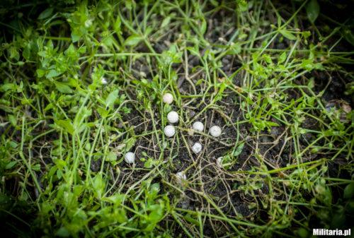 Kulki biodegradowalne rozkładające się