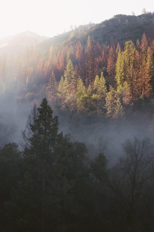 doradzamy, co zapakować na wycieczkę w góry jesienią