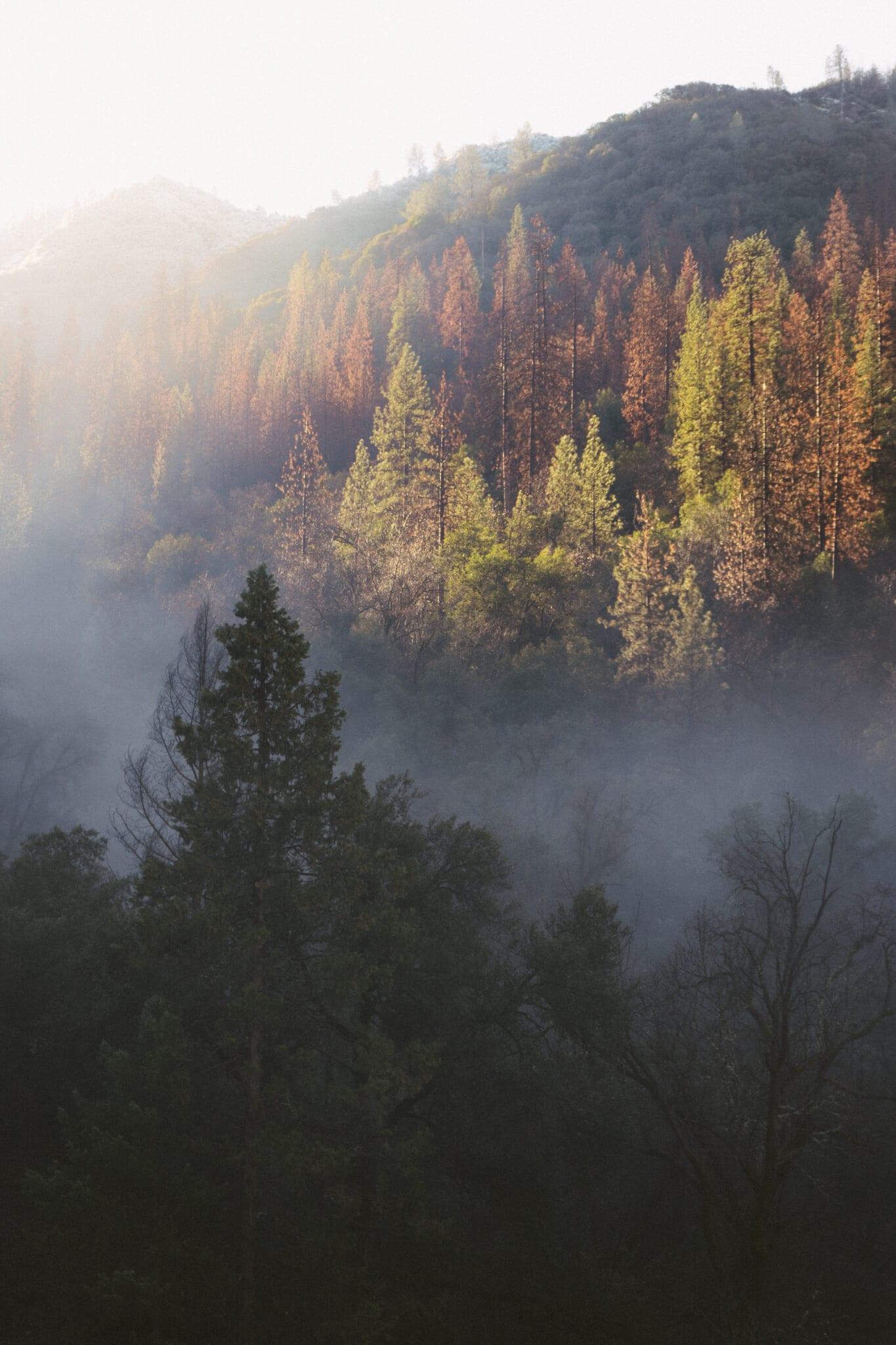 Jak się przygotować na wycieczkę w góry jesienią?