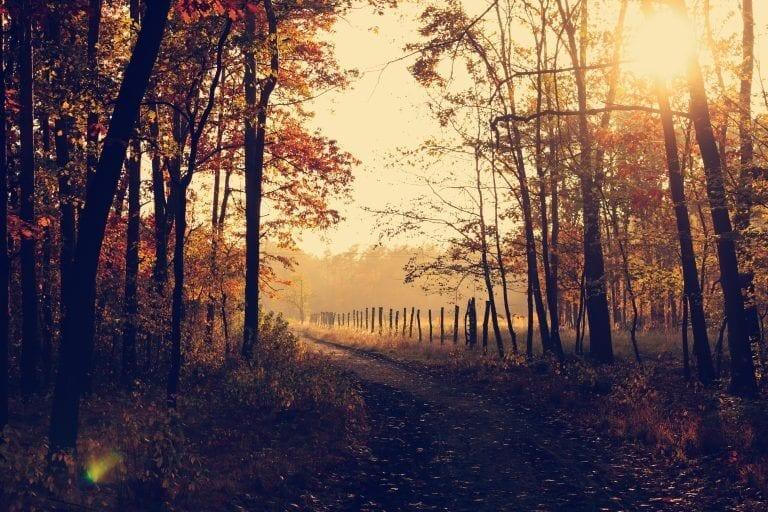 co zabrać na wycieczkę w góry jesienią