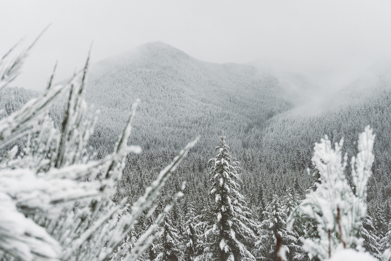Zimowe wędrówki. Święta i Sylwester w górach