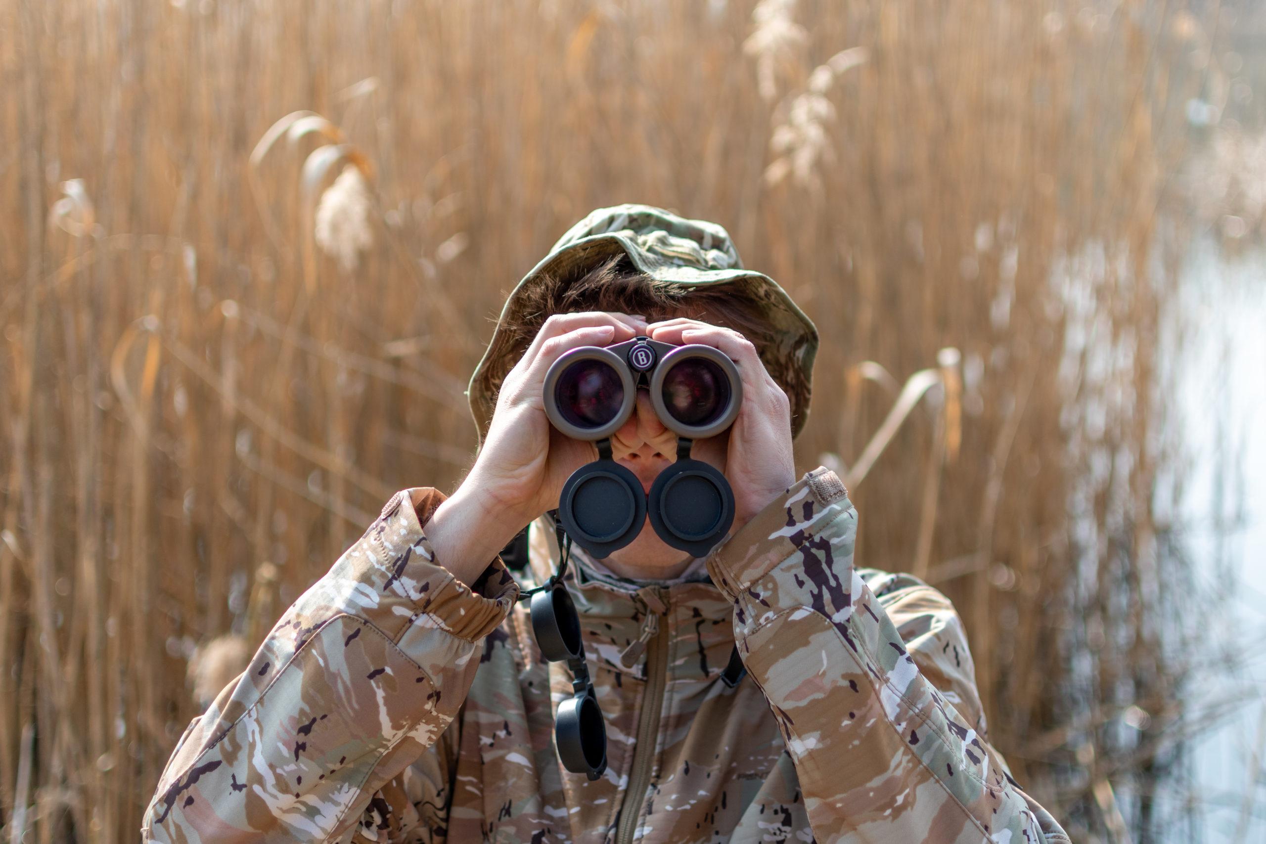 Ornitologia dla początkujących. Jak obserwować ptaki?